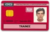 Red Bricklayer CSCS Card
